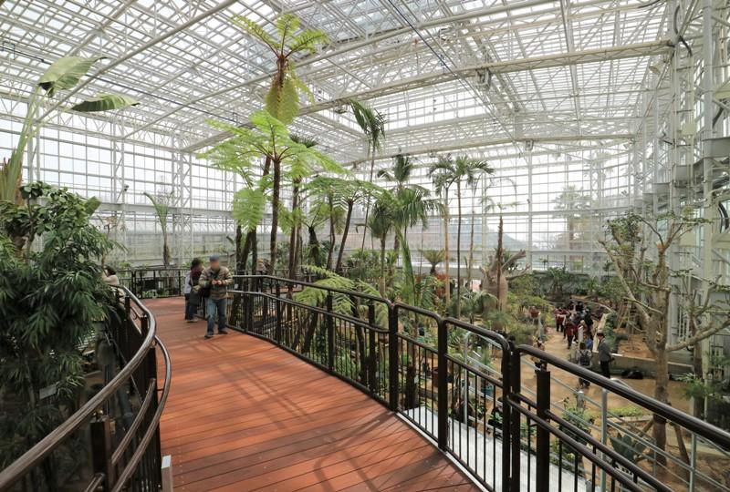 大温室、スロープデッキからの眺め