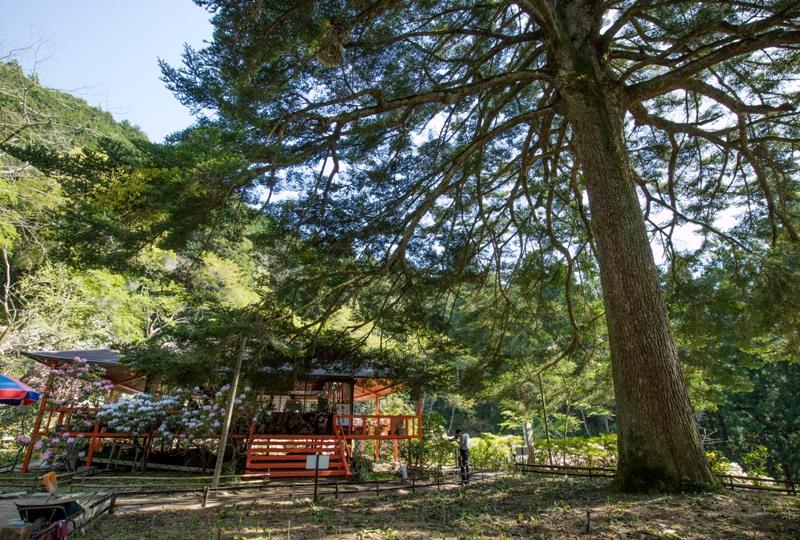 右平『花園の里』の山小屋