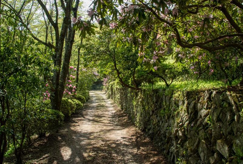 右平『花園の里』、石垣