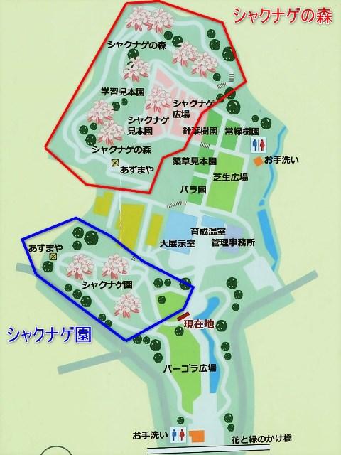 花みどり公園のマップ