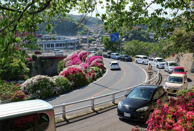 音戸大橋とツツジ、渋滞