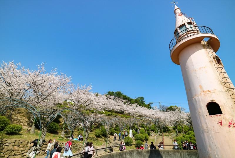 千光寺公園、サル山と桜と藤棚