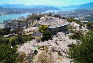 千光寺公園、頂上展望台から満開の桜と尾道水道の絶景