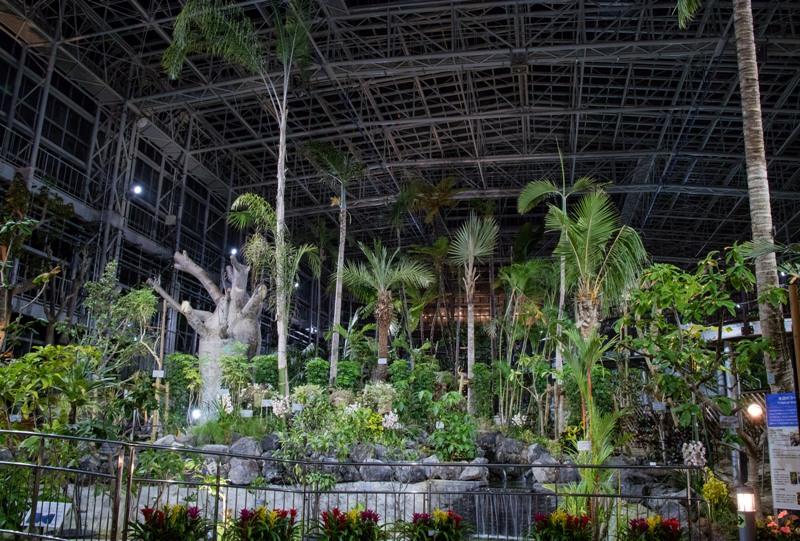 広島市植物公園、夜の大温室
