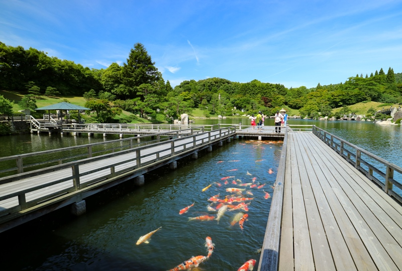 三景園、大海に突き出た回廊付近で元気に泳ぐ鯉