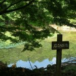睡蓮を目指し、水分峡のんびりハイキング!のハズが・・・(安芸郡府中町)