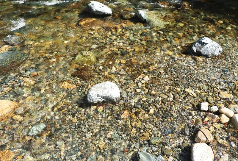 湯来ロッジ、湯来交流センター裏の水内川で川遊び