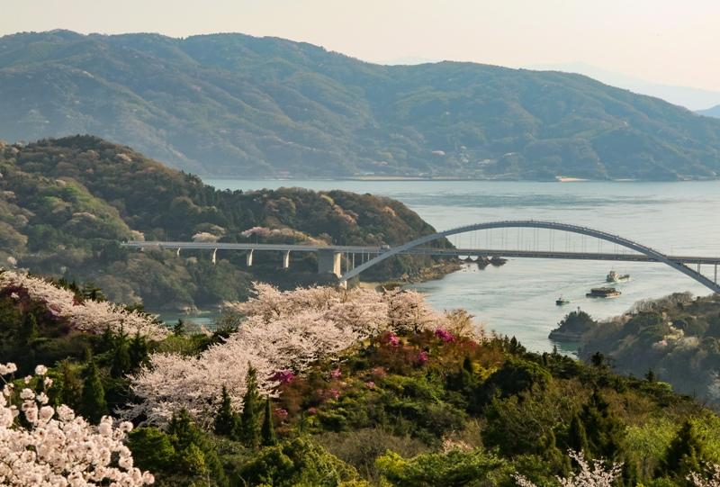 しまなみ海道「大三島橋」伯方島開山から桜と共に望む