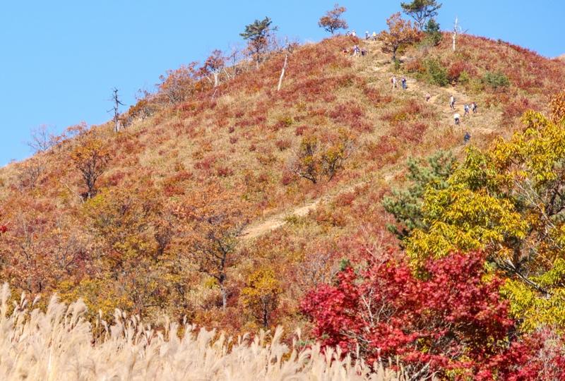 秋の深入山、登山者