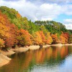 『聖湖(樽床ダム)』紅葉を楽しみながらダム湖を周遊じゃ!