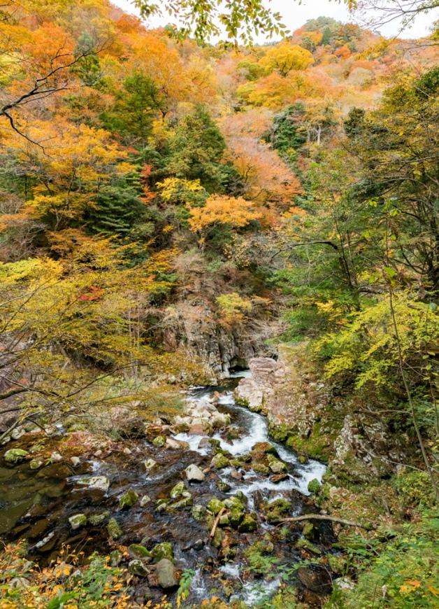 紅葉の三段峡「餅ノ木峠」から三段滝へ向かう遊歩道の渓谷美