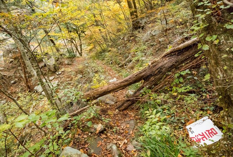 紅葉の三段峡「餅ノ木峠」から三段滝へ向かう遊歩道
