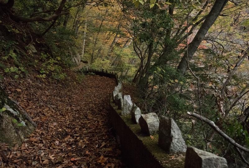 「三段滝へ行った帰り道」山は日暮れが速い