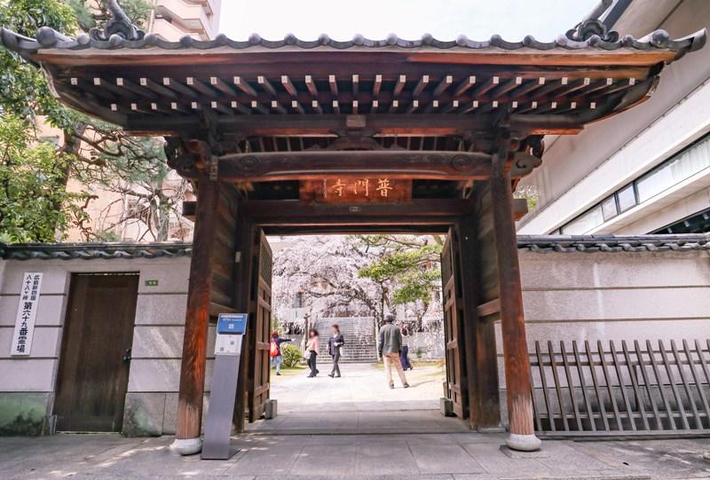 『八屋山 普門寺』しだれ桜(広島市中区大手町)