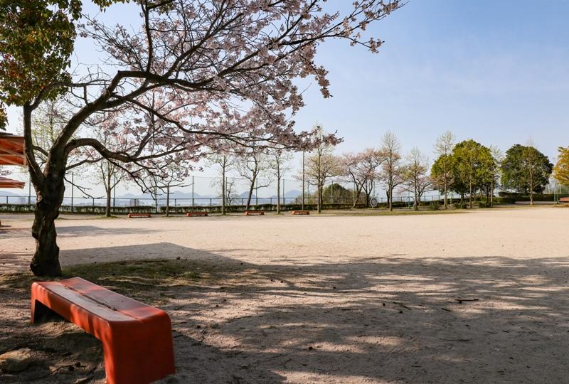 『竜王公園』の桜(広島市西区)