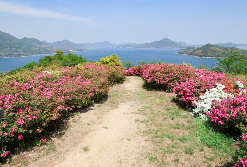 しまなみ海道、伯方島『ツツジの咲く開山公園』