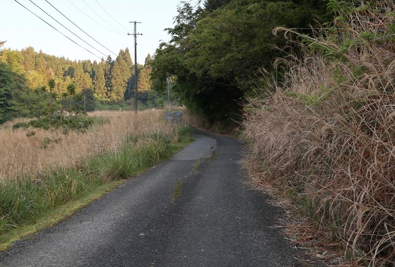 神ノ倉山公園への道のり