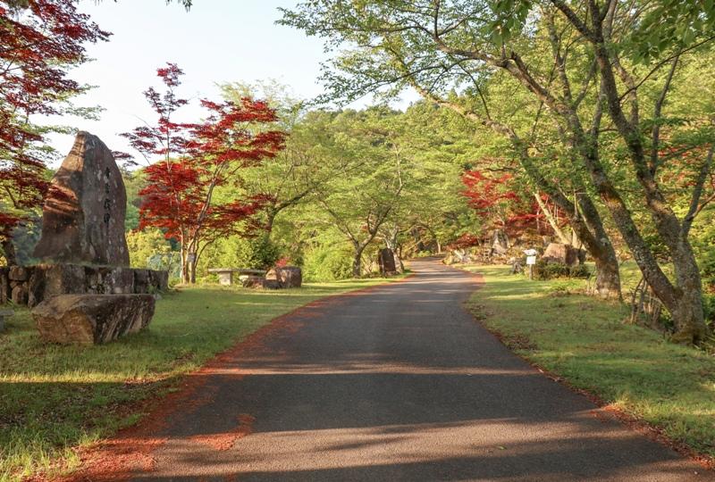 神ノ倉山公園の道路