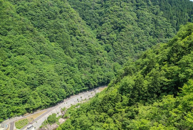 温井ダムの下流、滝山峡