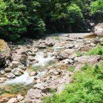 初夏の三段峡、心地よい新緑の下『黒淵』まで散策!(安芸太田町)