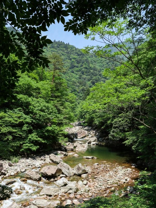 初夏の三段峡