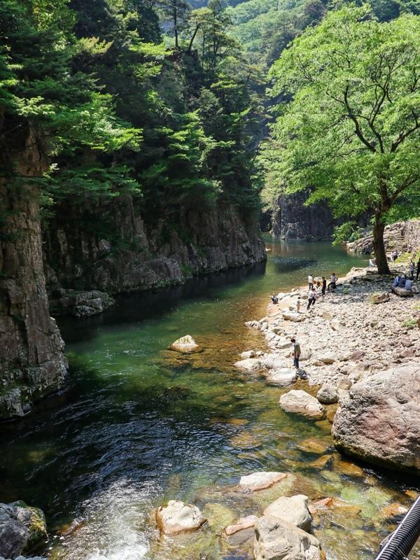 初夏の三段峡、黒淵荘の吊橋からの下流の眺め