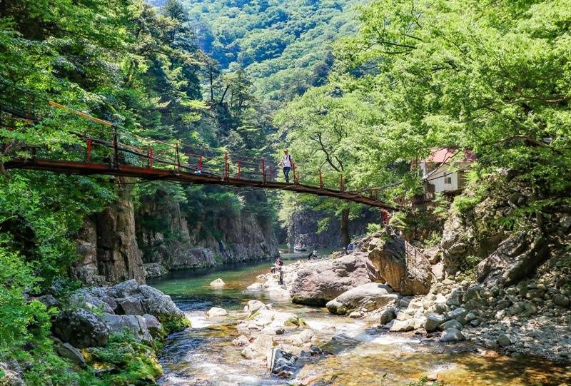 初夏の三段峡、黒淵荘の吊橋