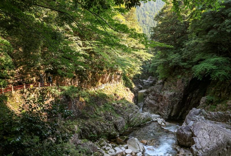 初夏の三段峡、味のある遊歩道