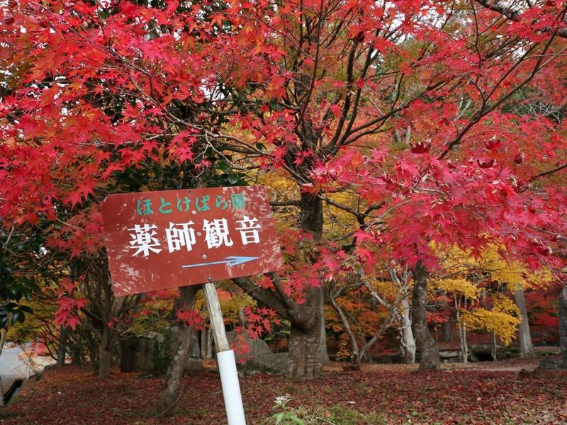 ほとけばら遊園、入口(北広島町大朝)