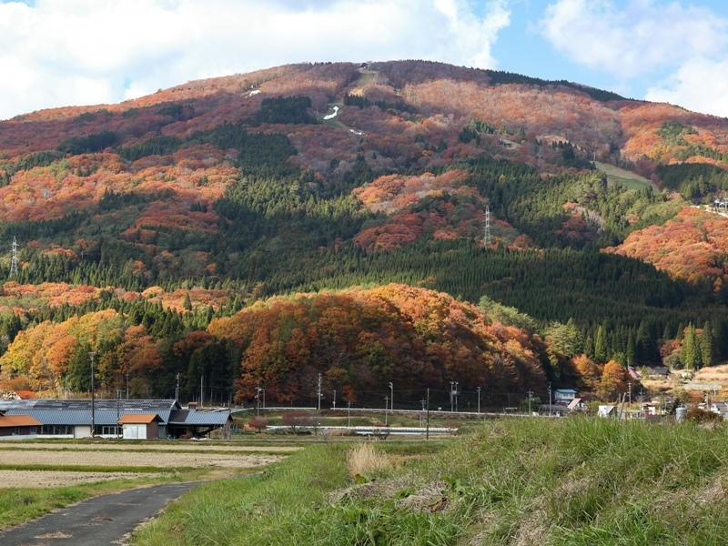 吉和、女鹿平山の紅葉