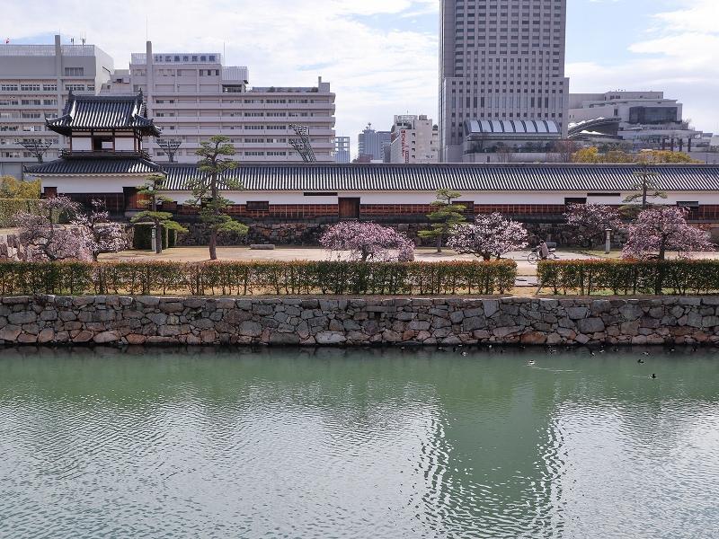 広島城「二の丸」梅の花
