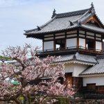広島城跡「二の丸」梅の花咲き鳥が集う(広島市中区)