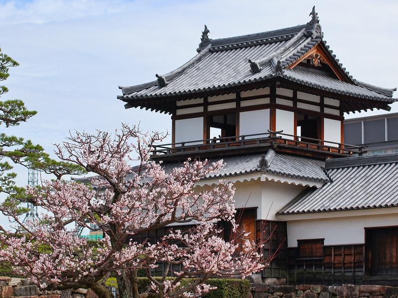 広島城「二の丸」梅の花と太鼓櫓